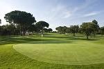 Golf Clubs in Twickenham - Things to Do In Twickenham
