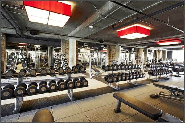 Fitness and Gyms in Twickenham