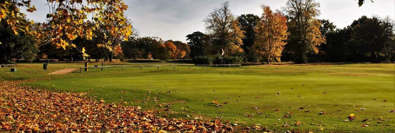 Golf Clubs Twickenham